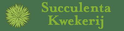 Succulenta Kwekerij